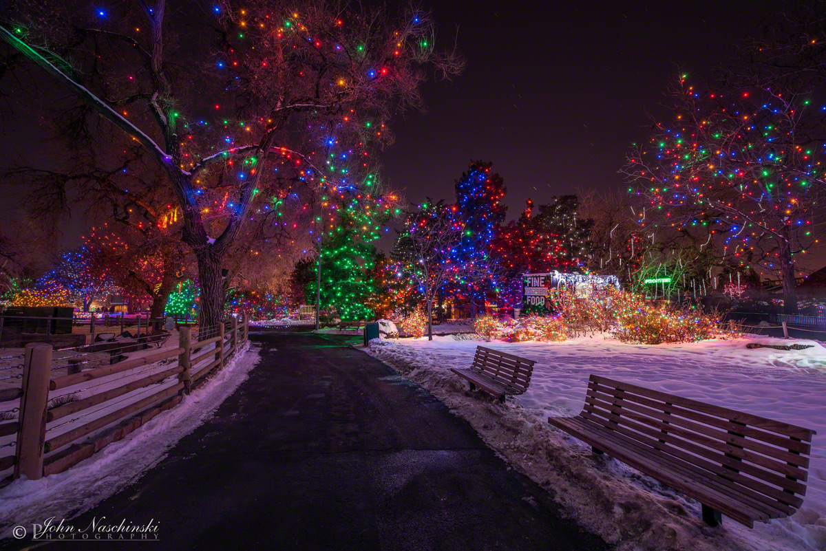 Denver Zoo Christmas Lights