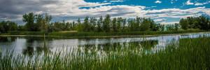 Colorado Open Space Greeley Park